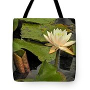 Lotus Flower In White Tote Bag