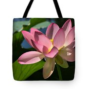 Lotus - Flowers Tote Bag