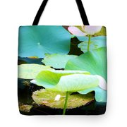 Lotus Lilly Pond Tote Bag