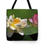 Lotus Pink -- Lotus White And Gold Tote Bag