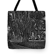 Louisiana Moon Rising Monochrome  Tote Bag