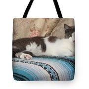 Lounging Cat Tote Bag
