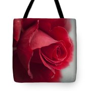 Love Is A Canvas Tote Bag
