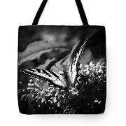 Eclectus Parrot  - Eclectus Roratus Tote Bag