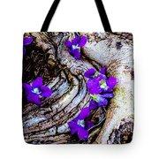 Love Tinted Glasses Tote Bag