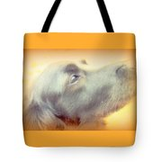Who Will Love Me Forever When You Are Gone  Tote Bag