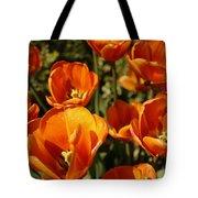 Lovely Burnt Orange Tulips Tote Bag