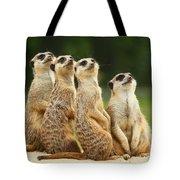 Lovely Group Of Meerkats Tote Bag