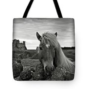 Lovely Horse And Tantallon Castle Tote Bag