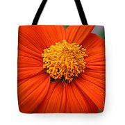 Lovely In Orange - Mexican Daisy Tote Bag