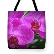 Lovely In Purple - Orchids Tote Bag