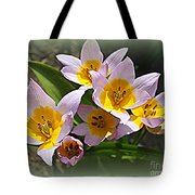 Lovely In White And Yellow - Tulips Tote Bag