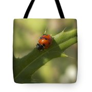 Lovely Lady Bug Tote Bag