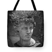 Lovely Lady Bw Tote Bag