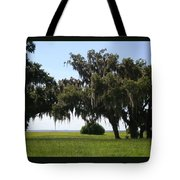 Lovely Landscape Tote Bag