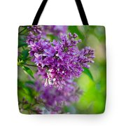 Lovely Lilacs Tote Bag