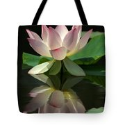 Lovely Lotus Reflection Tote Bag