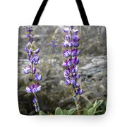 Lovely Lupines Tote Bag