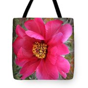 Lovely Peony Tote Bag