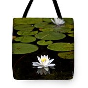 Lovely Pond Lily Tote Bag
