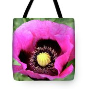 Lovely Springtime Tote Bag