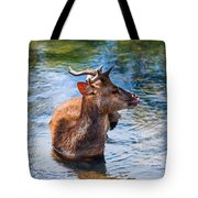 Lovely Time In Water.  Male Deer In The Pampelmousse Botanical Garden. Mauritius Tote Bag by Jenny Rainbow
