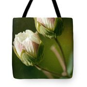 Lovely Twins Tote Bag