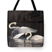 Loving Embrace Tote Bag