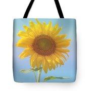 Loving The Sun Tote Bag