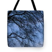 Low Angle View Of Tree At Dawn, Dark Tote Bag