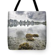Low Tide At False Creek In Stanley Park Tote Bag