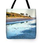 Low Tide At Jekyll Island Tote Bag