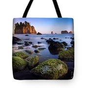 Low Tide At Second Beach Tote Bag