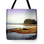Low Tide Revelations Tote Bag