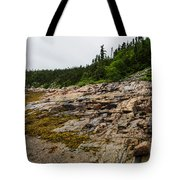 Low Tide - Walking On The Bottom Of Saint Lawrence River Tote Bag