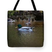 Lowcountry Duck Gathering Tote Bag