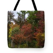 Lowcountry Fall Color Tote Bag
