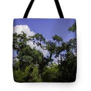 Lowcountry Life Oaks Tote Bag