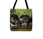 Lower Adams Falls Tote Bag