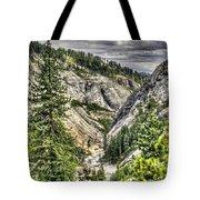 Lower Bear 2 Tote Bag