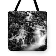 Lower Bridal Veil Falls 1 Bw Tote Bag