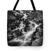 Lower Bridal Veil Falls 2 Bw Tote Bag