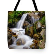 Lower Bridal Veil Falls 4 Tote Bag