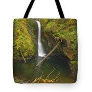 Lower Butte Creek Falls Tote Bag