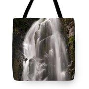 Lower Falls Two Tote Bag