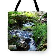 Lower Granite Falls 2 Tote Bag