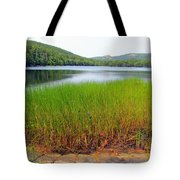 Lower Hadlock Pond Tote Bag