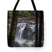 Lower Lewis Falls 3 Tote Bag