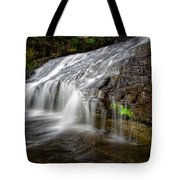 Lower Little Falls Tote Bag