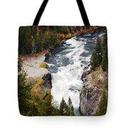 Lower Mesa Tote Bag